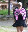 andrea's wings