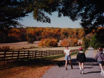 Brookberry Farm Tour