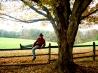 Climbing fences