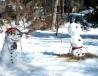 snow joy